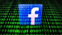 Facebook n'a pas précisé quelle utilisation il entendait faire des données demandées, selon la source [Lionel BONAVENTURE / AFP/Archives]