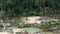 Déforestation dans l'Amazonie péruvienne, liée aux mines illégales d'or, en mars 2019 [GUADALUPE PARDO / POOL/AFP/Archives]