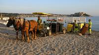 Une hippomobile sillonne une plage de Calvi, en Corse, pour ramasser les poubelles des restaurants, le 28 juillet 2017 [PASCAL POCHARD-CASABIANCA / AFP]