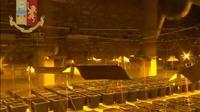 Capture d'écran réalisée le 11 octobre 2019 à partir d'images fournies par la police italienne qui a découvert  une vaste plantation de marijuana derrière une cabine de douche en Sardaigne  [ / Police italienne/Police italienne]