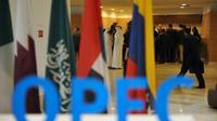L'Opep et ses partenaires se réunissent vendredi et samedi à Vienne, en Autriche [Ryad Kramdi / AFP/Archives]