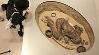 La momie du musée égyptien de Turin qui a fait reculer de 1.000 ans la technique d'embaumement [Marco BERTORELLO / AFP/Archives]