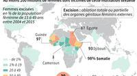 L'excision dans le monde [Jean Michel CORNU, Vincent LEFAI / AFP]