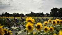 Le peloton du Tour de France lors de la 18e étape entre Trie-sur-Baise et Pau, le 26 juillet 2018 [Marco BERTORELLO / AFP]