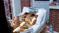 Une femme suspectée d'être infectée par le choléra, le 6 mai 2017 à Sanaa [Mohammed HUWAIS / AFP/Archives]