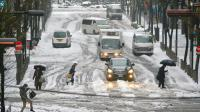 Tokyo sous la neige le 15 février 2014 [Kazuhiro Nogi  / AFP]