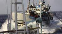 Un bateau de l'organisation écologique Sea Shepherd approche un navire de recherche japonais dans l'océan Austral le 2 mars 2014 [ / Institute of Cetacean Research/AFP/Archives]