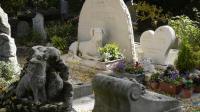 Vue du cimetière pour chiens d'Asnières, le 23 octobre 2013 [Bertrand Guay / AFP]