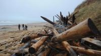 Une plage sur l'Île de Ré, le 5 janvier 2014 après le passage de la tempête [Leoty Xavier / AFP]