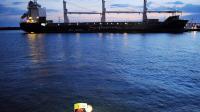 """Des activistes de Greenpeace bloquent le cargo """"Safmarine Sahara"""", accusé de transporter du bois illégal, dans le port de La Rochelle le 22 juin 2014 [Xavier Leoty / AFP]"""