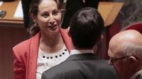 La ministre de l'Energie Ségolène Royal à l'Assemblée Nationale, le 1er juillet 2014 à Paris [Jacques Demarthon / AFP]
