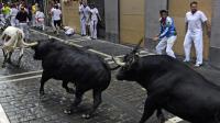 Lâcher de taureaux dans les rues de Pampelune, à l'occasion de la San Fermin, en Espagne le 9 juillet 2014  [Rafa Rivas / AFP]