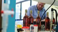 """Un chercheur fait des tests dans le cadre du projet """"Vinneo"""", au laboratoire de l'Institut Français de la Vigne et du Vin à Lisle-sur-Tarn (sud de la France), le 22 juillet 2014  [Eric Cabanis / AFP]"""