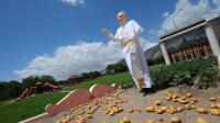 Une statue du pape François dans un chammp de pommes de terre à Cicciano, dans le sud de l'Italie, le 20 mai 2013 [Mario Laporta / AFP]
