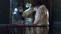 Les services sanitaires chinois ramassent des poulets morts à Shanghaï, le 5 avril 2013 [ / AFP]