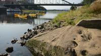 """La """"Pierre de famine"""" à Decin, en République tchèque, visible le 29 août 2018 en raison du faible niveau de l'eau de l'Elbe [Michal CIZEK / AFP]"""