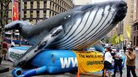 Une baleine gonflable est installée dans une rue de Sydney en 2006 pour manifester contre la chasse des ces mammifères  [Greg Wood / AFP/Archives]