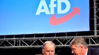 Les leaders de l'AfD, Jörg Meuthen et Alexander Gauland, en décembre 2017 à Hanovre.