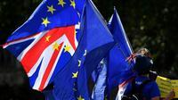 Des militants anti-Brexit manifestent devant le Parlement britannique à Londres, le 29 août 2019 [DANIEL LEAL-OLIVAS / AFP]