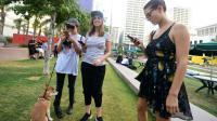 Des joueuses traquent les Pokemons sur leur portable, à Pershing Square à Los Angeles le 13 juillet 2016 [Frederic J. BROWN / AFP]