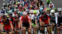 Le peloton du Tour de France, le 4 juillet 2016 entre Granville et Angers  [jeff pachoud / AFP]