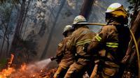 Les pompiers portugais combattent le feu à Calheta sur l'île de Madère où les incendies ont été maîtrisés, le 11 août 2016 [PATRICIA DE MELO MOREIRA / AFP]