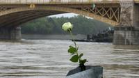 Une rose déposée au bord du Danube, à Budapest, le 30 mai 2019 [FERENC ISZA / AFP]