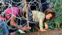 Des migrants se glissent sous les barbelés, à la frontière entre la Serbie et la Hongrie, le 27 août 2015 près de Roszke [ATTILA KISBENEDEK / AFP]