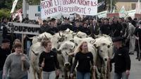 Des bergers, agriculteurs et élus de tous bords, manifestent à Pau le 30 avril 2018 contre la réintroduction de deux ourses dans les Pyrénées-Atlantiques (sud-ouest) [IROZ GAIZKA / AFP]