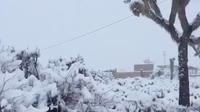 Une tempête de neige frappe une partie du sud de la Californie, depuis le 26 décembre.