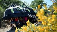 """Défilé festif de militants à la ZAD de Notre-Dame-Des-Landes, promenant un """"triton crêté"""", le dimanche 20 mai 2018 [GUILLAUME SOUVANT / AFP]"""
