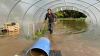 Une exploitation agricole inondée le 5 juin 2016 à Freuneuse [JEAN-FRANCOIS MONIER / AFP]