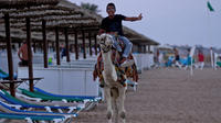 Les loueurs de chameaux trop insistants seront désormais passibles d'une amende.
