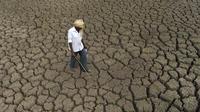 """Des pics à plus de 50°C ont été observés cette année en Asie, d'où des sécheresses à répétition (ici le """"lac"""" Gandipet, en Inde)."""