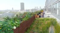 Trente-trois sites mis à la disposition par la mairie ou par des partenaires seront végétalisés à partir de 2017.