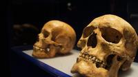 En bêchant son jardin, un Suisse a exhumé deux squelettes