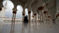 Vue en date du 28 avril 2013 de la mosquée à Abou Dhabi  [Karim Sahib / AFP/Archives]