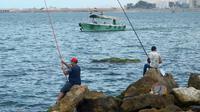 L'Egypte commence à être un pays de départ, selon le directeur de Frontex. Un nombre croissant de bateaux de pêche avec des centaines de personnes à bord ont été secourus [STRINGER / AFP/Archives]