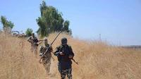 Partis combattre dans les rangs de Daesh en Syrie et en Irak, ils sont nombreux à vouloir regagner l'Europe.