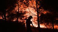 Un pompier lutte contre un incendie, le 19 août 2007 près de Carnoux-en-Provence dans les Bouches du Rhône [BERTRAND LANGLOIS / AFP]