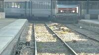 Dette de la SNCF : un problème qui dure depuis sa création