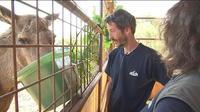 C'est la saison des naissances dans les parcs animaliers