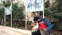 Un refuge de chats dans la Syrie en guerre