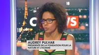 Audrey Pulvar : «100% de la population touchée» par le chlordécone