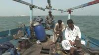 Au Pakistan, des chiens sont nourris par des pêcheurs volontaires