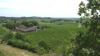 Pénurie de saisonniers dans les vignobles