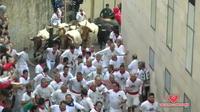 Les courses de taureaux de Pampelune