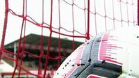 Brigitte Henriques, une vie de foot