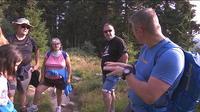 Alsace : une randonnée pour découvrir les chamois