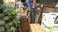 La Braderie de Lille : le paradis des brocanteurs
